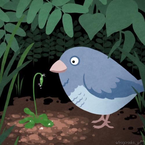 小鳥と苔の花